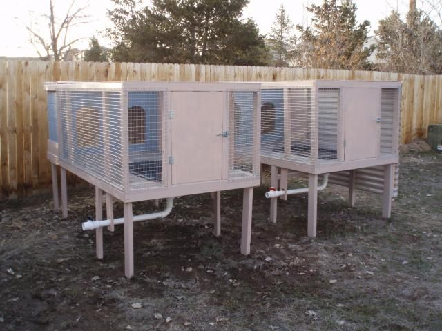 Duck pen with tub and drain for water | Farm