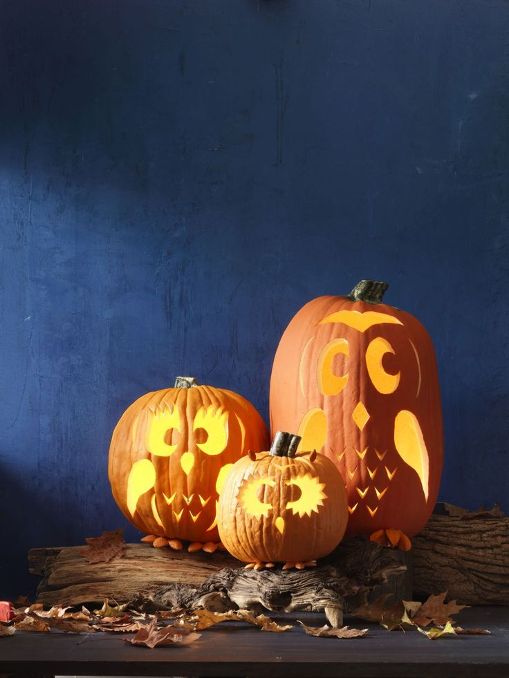 60 Of The Most Creative Pumpkin Carving Ideas Home