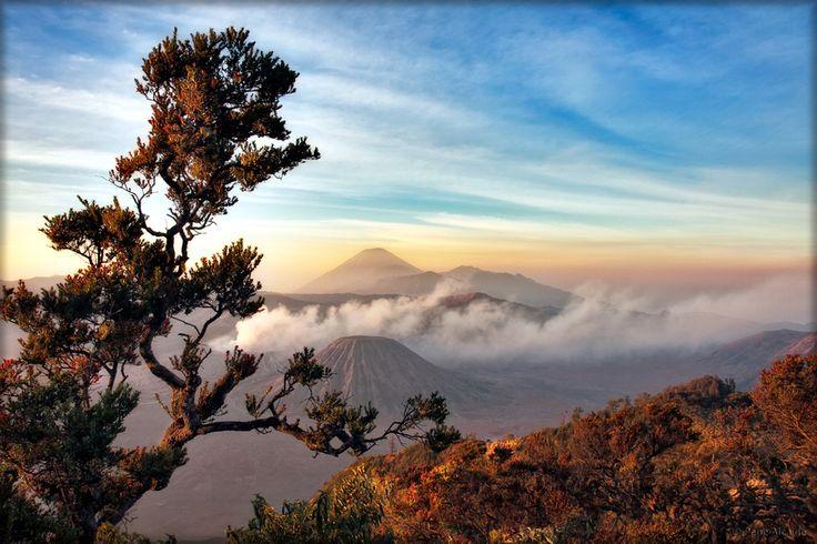 Monte Bromo by Pepe Alcaide on 500px,  Bromo es uno de los volcanes más activos de Java. Se encuentra localizado en la cumbre de la Caldera Tengger, de 16 kilómetros de diametro. La Caldera forma parte del Parque Nacional de Bromo Tengger Semeru, situado a unos 112 kilómetros al sudeste de Surabaya la capital del Este de Java . Indonesia