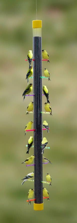 Fun Thistle Feeder Attract more goldfinches quickly with the Rainbow Finch Feeder. It boasts 18 perching stations and is truly breathtaking when full. This finch feeder holds approx. 2.25 lbs. of this