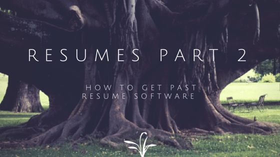 Resumes How to get past resume software