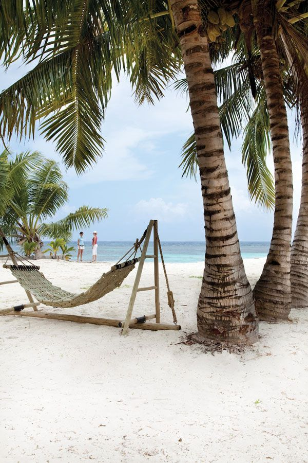 I want to lay on a hammock on the beach