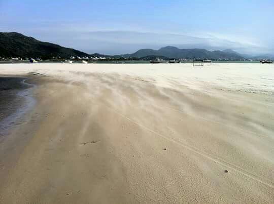 Ponta das Canas Beach - Florianopolis, Brazil