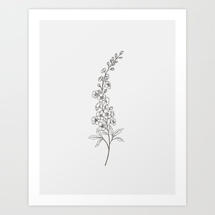 Delphinium Line Art Art Print By Gooseberry Moon X Small In 2020 Larkspur Tattoo Birth Flower Tattoos Larkspur Flower Tattoos