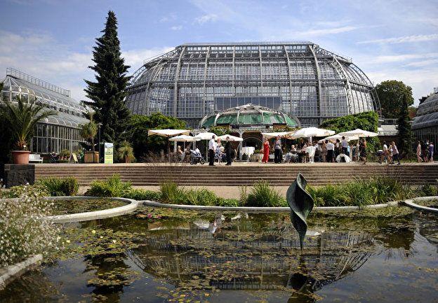 Botanischer Garten Grosses Tropenhaus Berlin De Botanischer Garten Berlin Botanischer Garten Garten