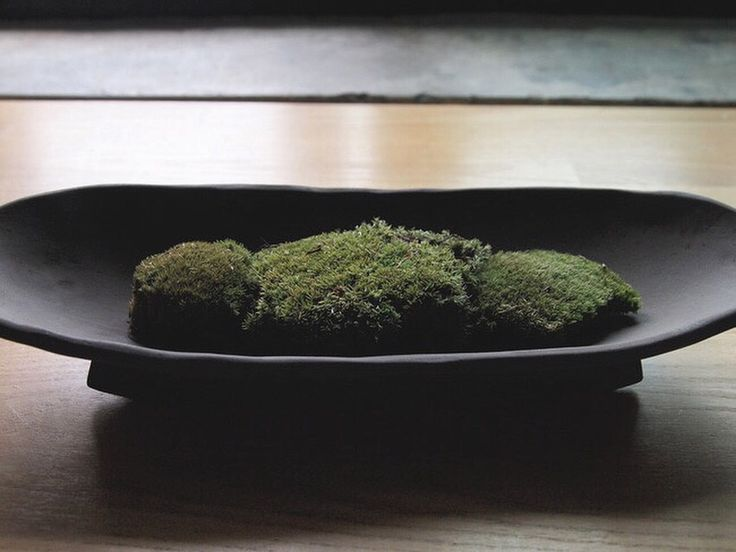 Baguette Bowl with moss  by atelier shop PAUL AVRIL Ceramic Pottery Poterie