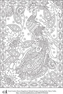 Adult Coloring Pages - Peacock