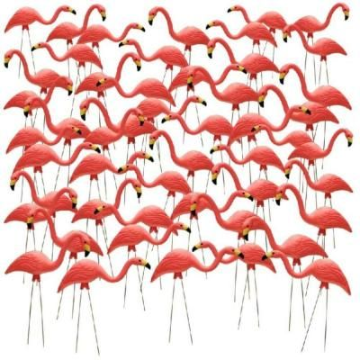 Really? I can get a 50 pack of flamingos? $119.00 at Home Depot!!!