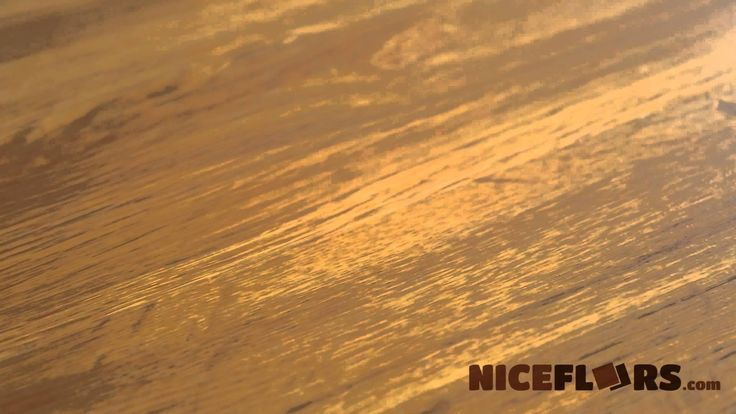 Ct101 733 coretec one surfside by water for Dog proof wood floors