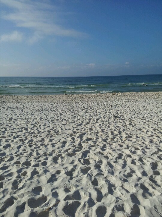 Panama beach, Florida <3