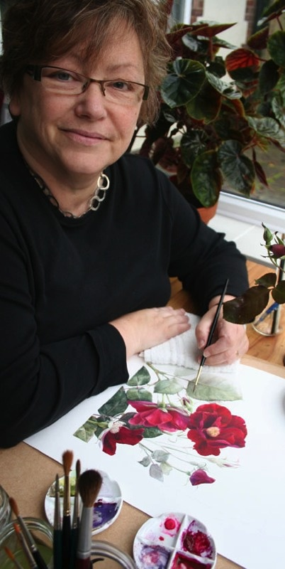 Elaine Searle - Botanical Artist