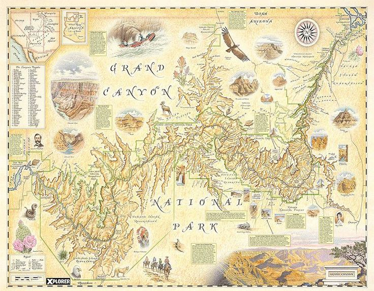 Hand-Drawn Map of the Grand Canyon | Distinctly Montana Gifts