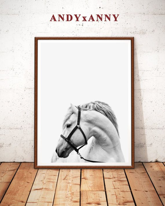 Horse Print Horse Photography Horse Printable Art by ANDYxANNY