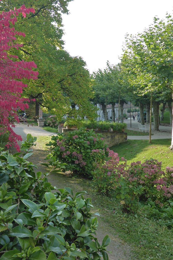 #Staatspark #Fürstenlager #Euonymus #Hortensia #Mauer #Platane #Gartendenkmalpflege #Bensheim #HessischeWeinstraße #b_lau