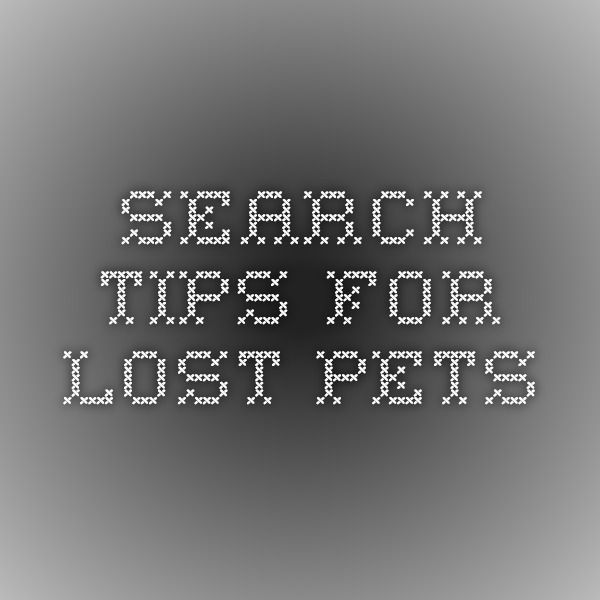 Search Tips for Lost Pets