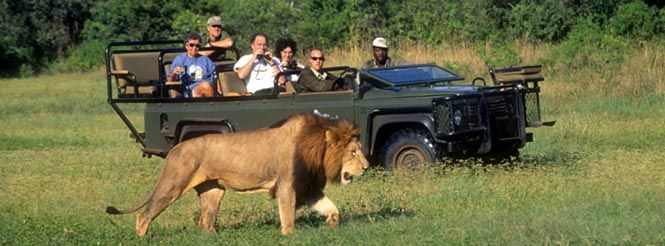 #KenyaSafaris is one of the most luxurious safari vacation in Africa.Check out more @ http://kenya-safaris.co/