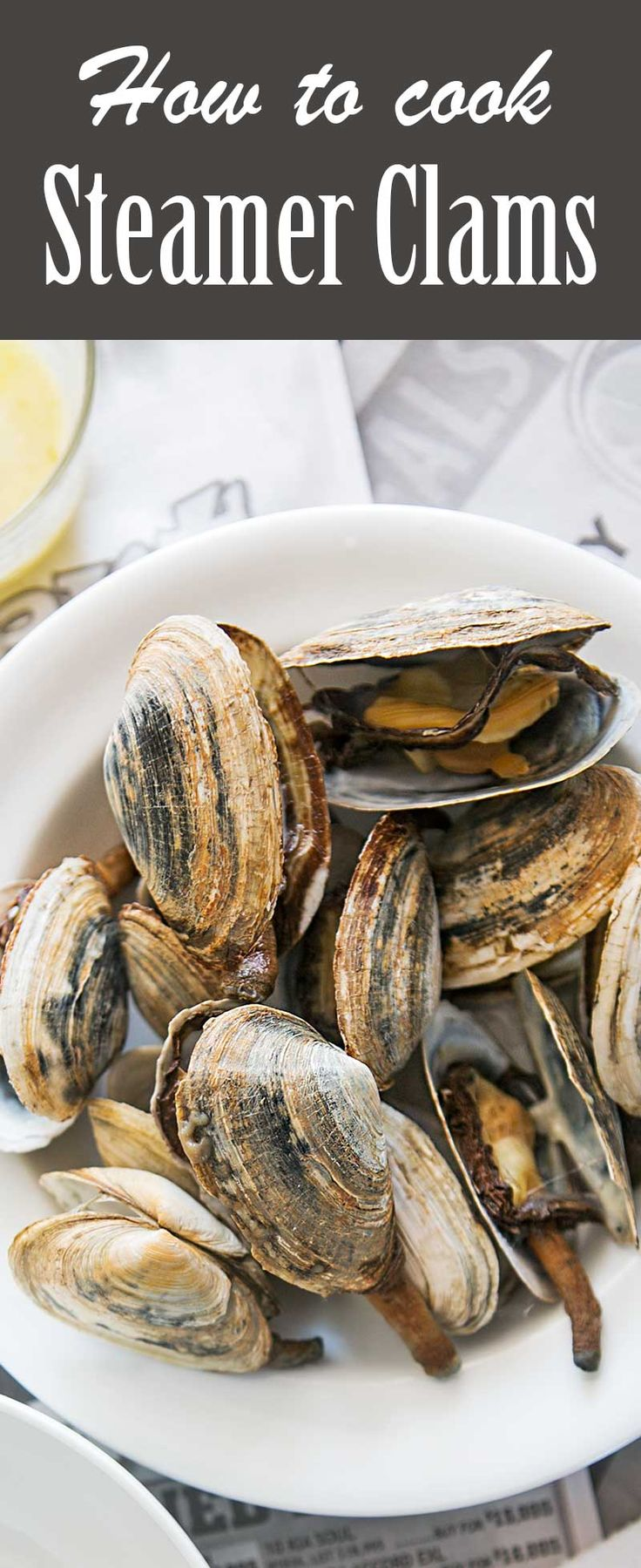 How to Cook and Eat Steamer Clams ~ How to make steamed soft shell clams, otherwise known as steamers, a specialty of New England. ~ SimplyRecipes.com