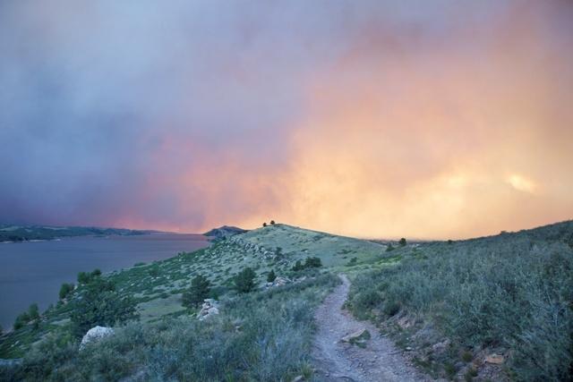 Cerca de 400 hectáreas de cultivos y plantaciones destruidas por incendios forestales