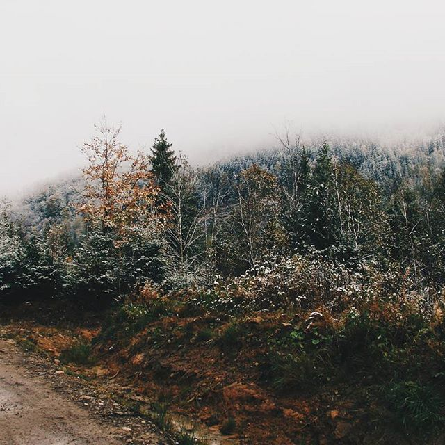 ❄ First snow in mountains