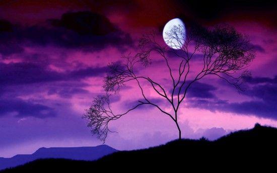 Луна и фиолетовое небо