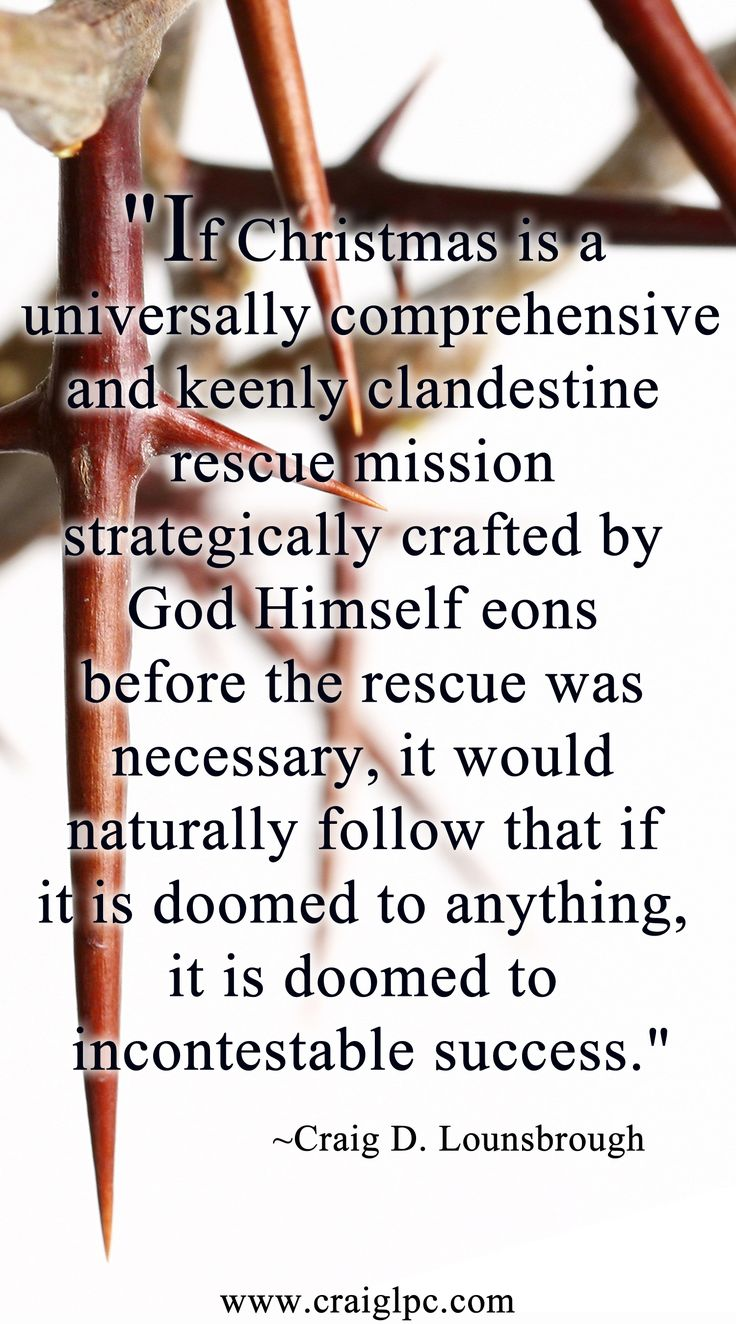 To strategize a rescue mission irrefutably capable of saving every human being is leagues beyond our ability to comprehend, and enormous beyond any resource we possess to execute. And to embark upon just such a mission fully knowing that without our death the mission will fall to failure is bravery of the greatest sort imaginable. Yet, that is exactly what Christmas is.