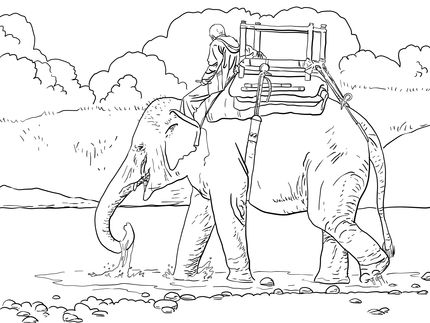 Riding Indian Elephant Coloring Page
