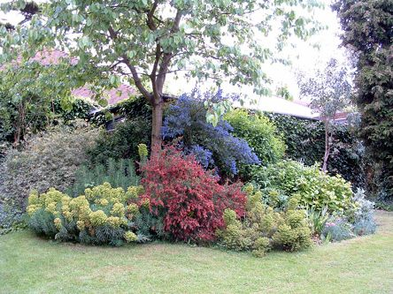 images about Yard and Garden layout inspirations