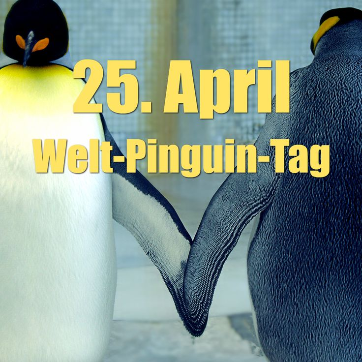 Welt Pinguin Tag 2021