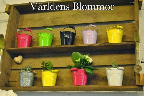 Vackra trädetaljer finns hos Världens Blommor i Landskrona. Våra heminredningsdetaljer hjälper Er att göra mysigt hemma eller på arbetsplats. En Blomma För Alla Tillfälle. Vi finns på Norra Långgatan 16 i Landskrona. Vi finns även på PINTEREST FACEBOOK INSTAGRAM TWITTER GOOGLE PLUS GOOGLE MAPS WWW.VARLDENSBLOMMOR.SE YOUTUBE 0418 65 11 59 Vi har blomsterbud också, om ni vill överraska någon Kolla gärna på alla våra inspirerande foton och filmer I sociala medier. Annorlunda blomsterbutik
