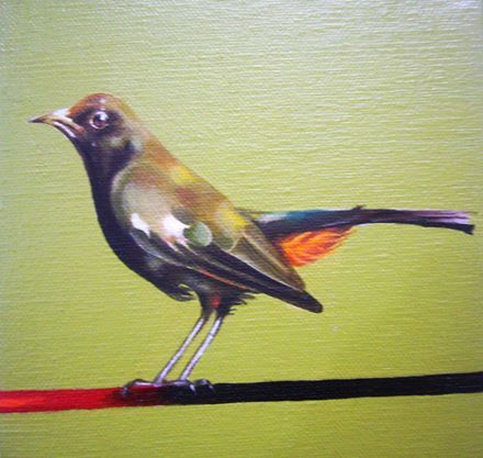 6x6 oil on canvas 2014