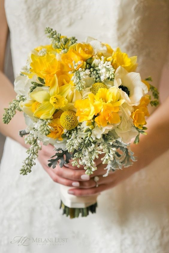 Gemini Lively and talkative Colour - yellow Flowers & plants - daffodil, maidenhair fern and nut-bearing trees Photo | Melani Lust