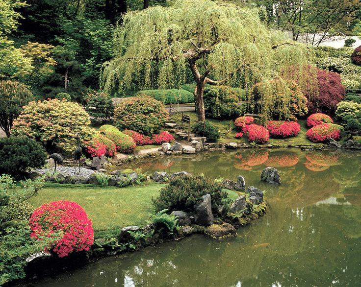 prettyGardens Ideas, Pretty Gardens, Water Gardens, Peace Gardens, Weeping Willow, Japanese Gardens, Japan Gardens, Backyards, Portland Oregon