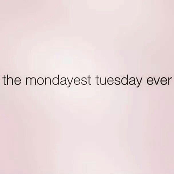 I needed a longer long weekend! Lol