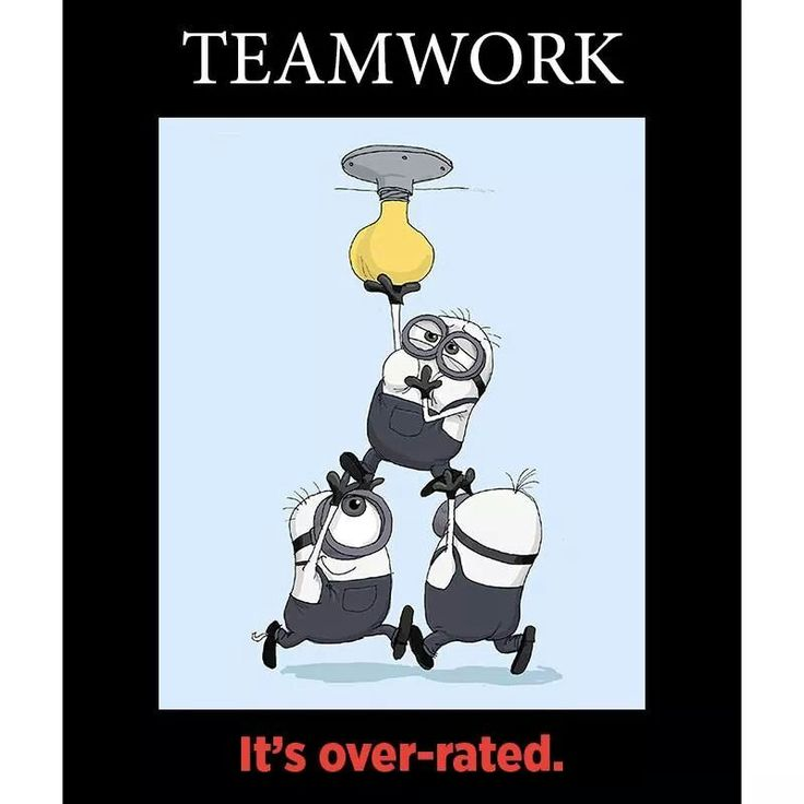 Funny Team Quotes: Team Work....overrated
