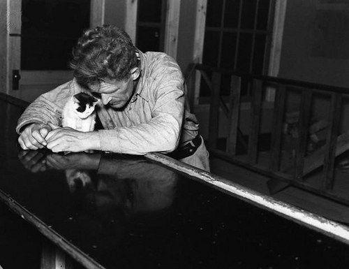 Одинокий мужчина со своим котенком, 1937 г.Фото: Рассел Ли » Смешные Анекдоты Истории Цитаты Афоризмы Стишки Картинки прикольные Игры