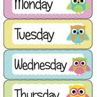 This colorful file allows you to add a touch of color to your calendar area.  7 days of the week cards