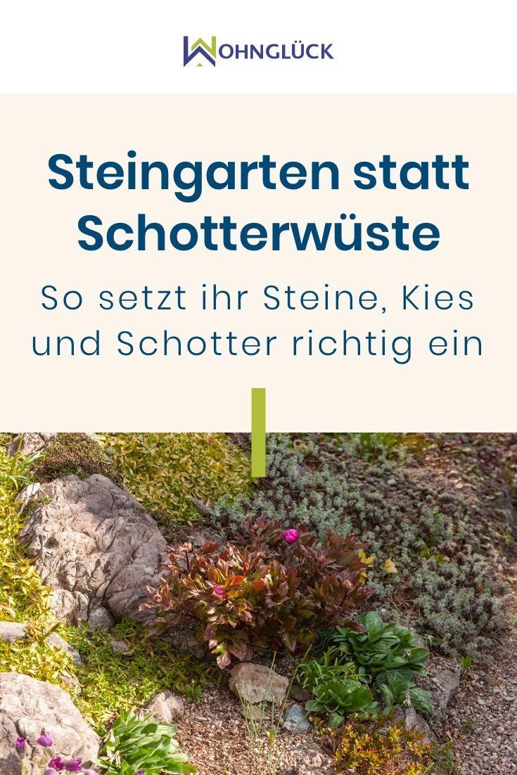 Steingarten Statt Schotterwuste So Setzt Ihr Steine Und Kies Richtig Ein In 2020 Steingarten Steingarten Pflanzen Garten