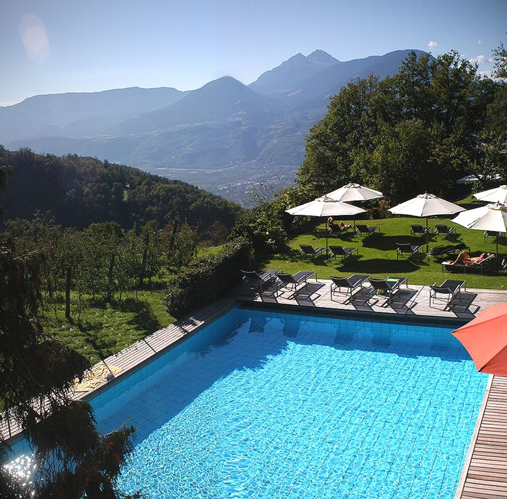 The panorama pool  in the tropical garden with 10.000 m²