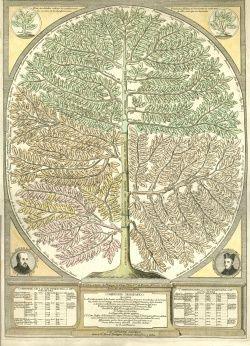 Manuel Rodriguez. Compendio Geografico, c.1768. Case broadside BX3706.A2 C56 1768.