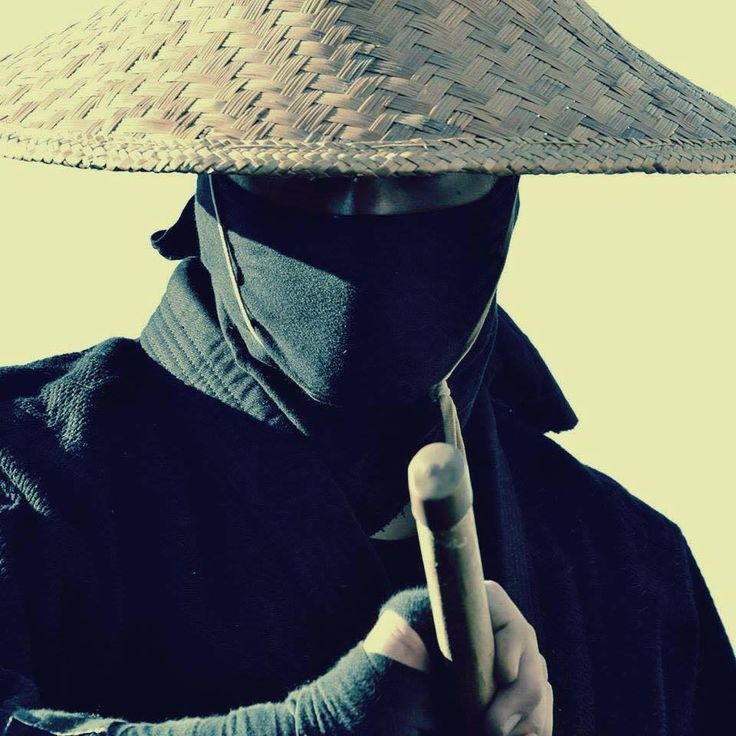 Ninja in disguise