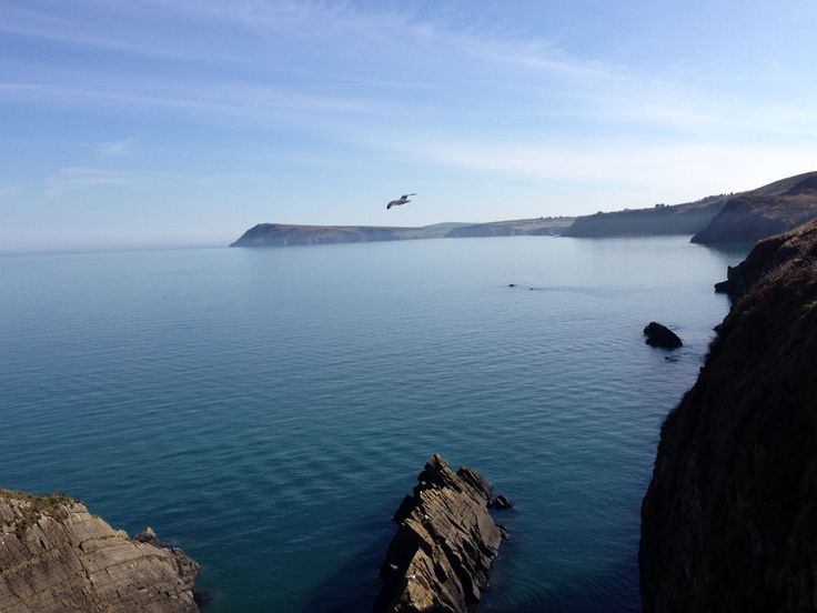 Fishguard coastal walk view.