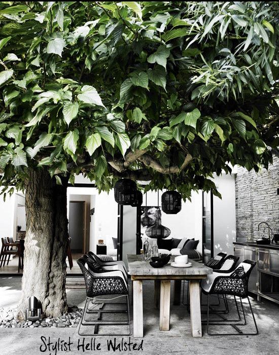 absolutely love this outdoor setting, mi casa: Casa en Saint Tropez: White Wood, Ideas, Tree, Outdoor Living, Outdoors, Gardens, Outdoor Spaces, Design, Black
