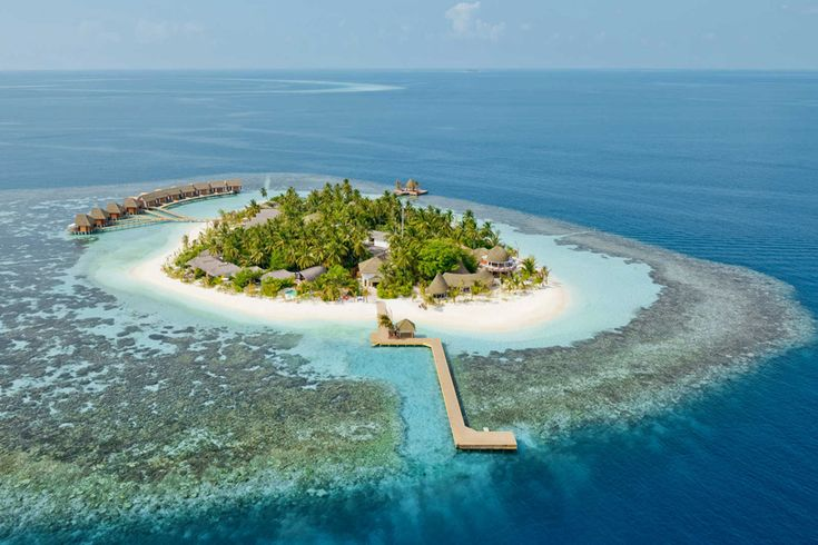 The best hotels in the Maldives, chosen by our expert, including luxury hotels, boutique hotels, budget hotels and Maldives hotel deals. Read the reviews and book. #Maldives #Hotels #tours #hotels #tours #travel #island