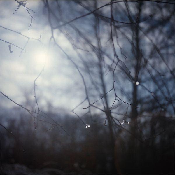 daniela imrichova photography: z: flexaret