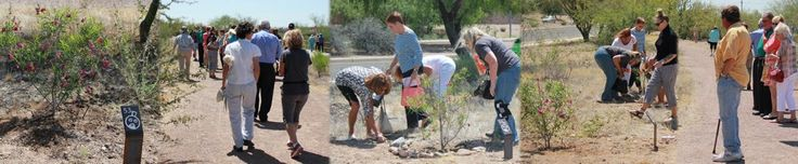 Tucson Parks and Recreation #cooking #classes #tucson #az http://law.nef2.com/tucson-parks-and-recreation-cooking-classes-tucson-az/  # Tucson Parks and Recreation The following centers do not have Open Recreation hours due to existing summer programming commitments and are not included in the free Open Recreation program: Quincie Douglas, Therapeutic Recreation, Randolph, Marty Birdman, Armory Park Senior, and Edith Ball Adaptive Recreation Centers Tucson Honored as 2017 Playful City USA…