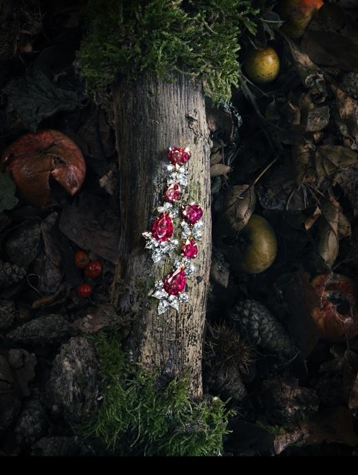 Still life photography ad by Arthur Woodcroft.