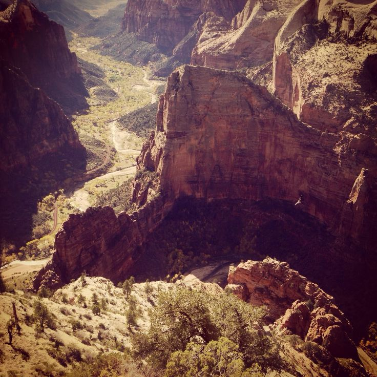 Looking down upon Zion National Park!