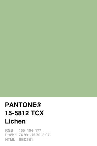 green tones = relax                                                                                                                                                     Mehr