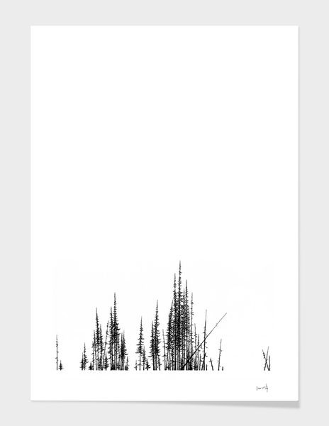 Discover «PineTree», Numbered Edition Fine Art Print by Det Tidkun - From $19 - Curioos
