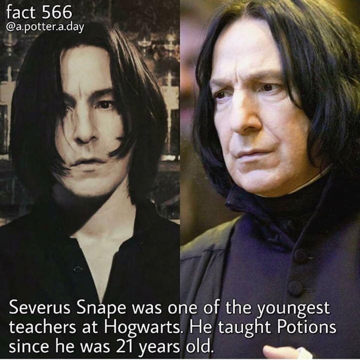 Harry Potter Bekleidungs Und Warengeschaft Severus Snape Harry Potter Universal Harry Potter Obsession